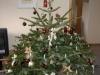 Weihnachtsbaum 2005